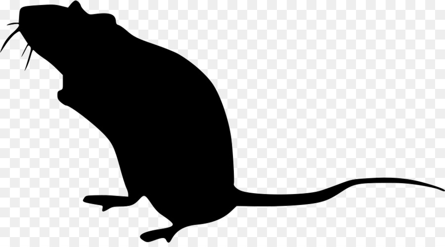 картинка силуэт крысы объяснил