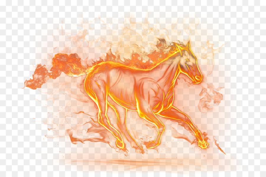 Kostenlos pferde desktop-hintergrundbilder 38 Hintergrundbilder