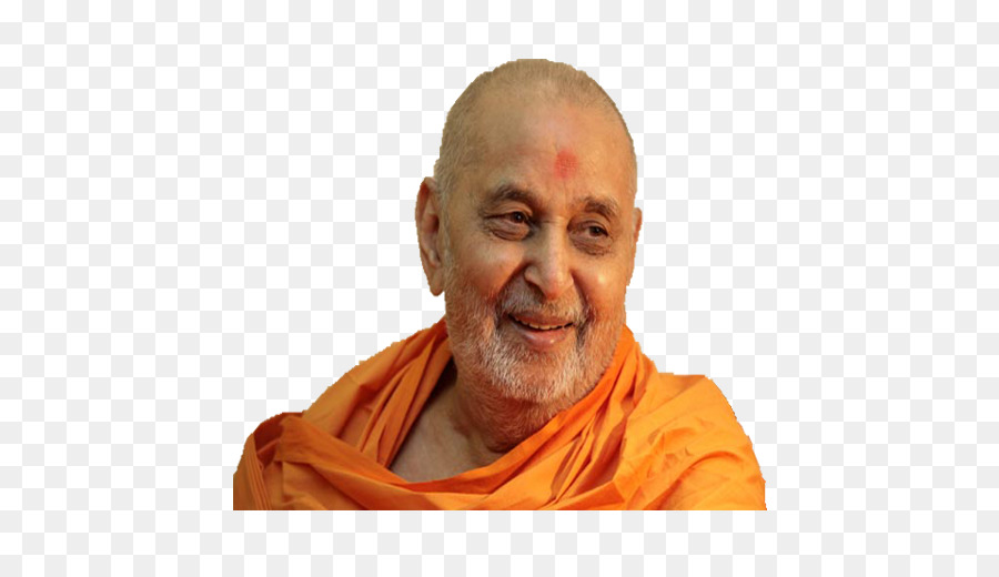 Happy New Year Mahant Swami 27