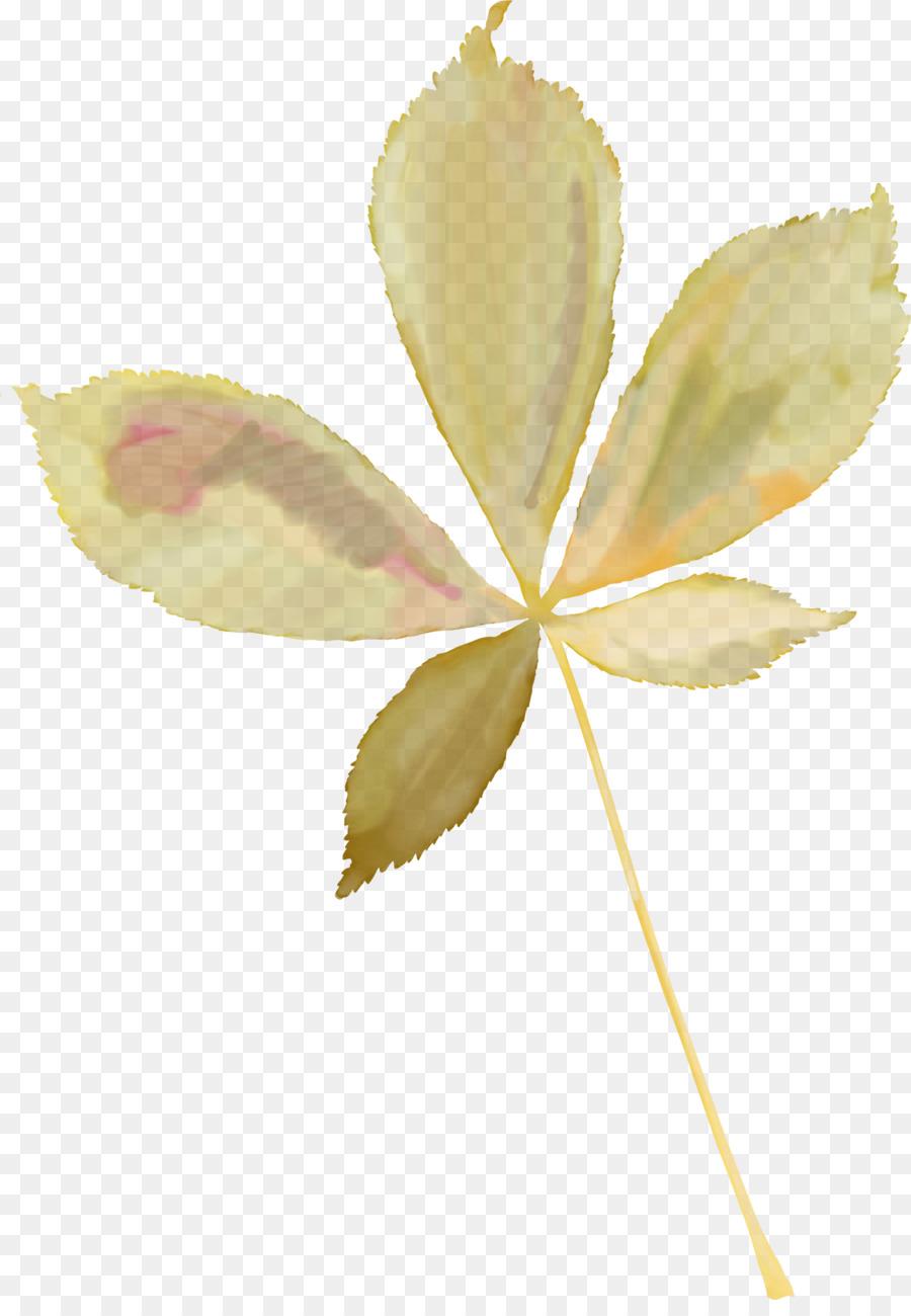 Picture Cartoon Png Download 1822 2600 Free Transparent Leaf Png Download Cleanpng Kisspng