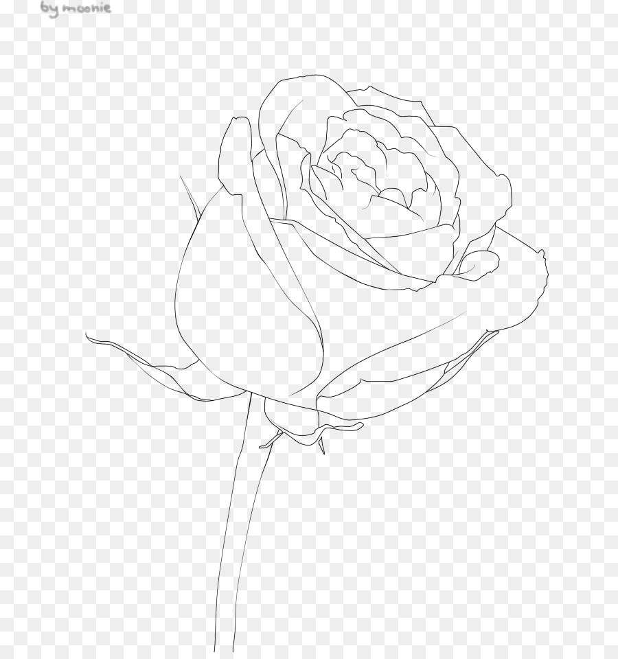 Black And White Flower Png 784 950 Free