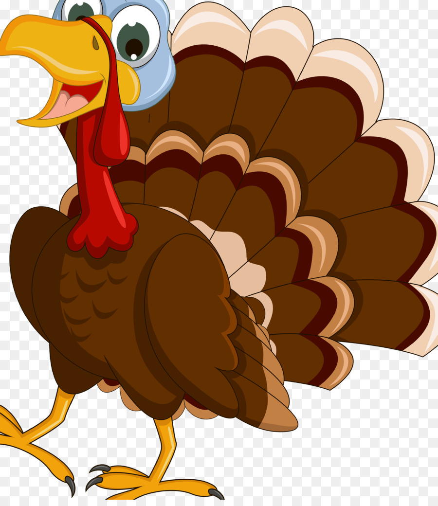Thanksgiving Turkey Drawing Png Download 3002 3425 Free Transparent Turkey Png Download Cleanpng Kisspng