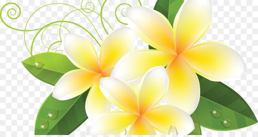 Flower Background Png Download 1200 630 Free Transparent Petal