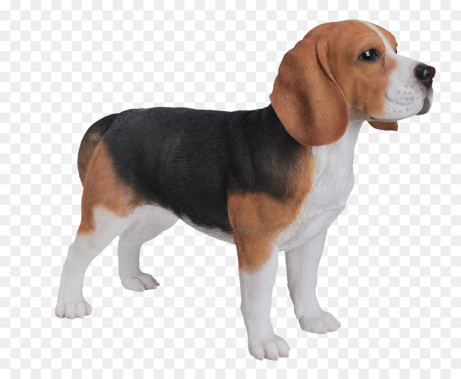 Dog Cartoon Png Download 2953 2417 Free Transparent Beagle Png Download Cleanpng Kisspng