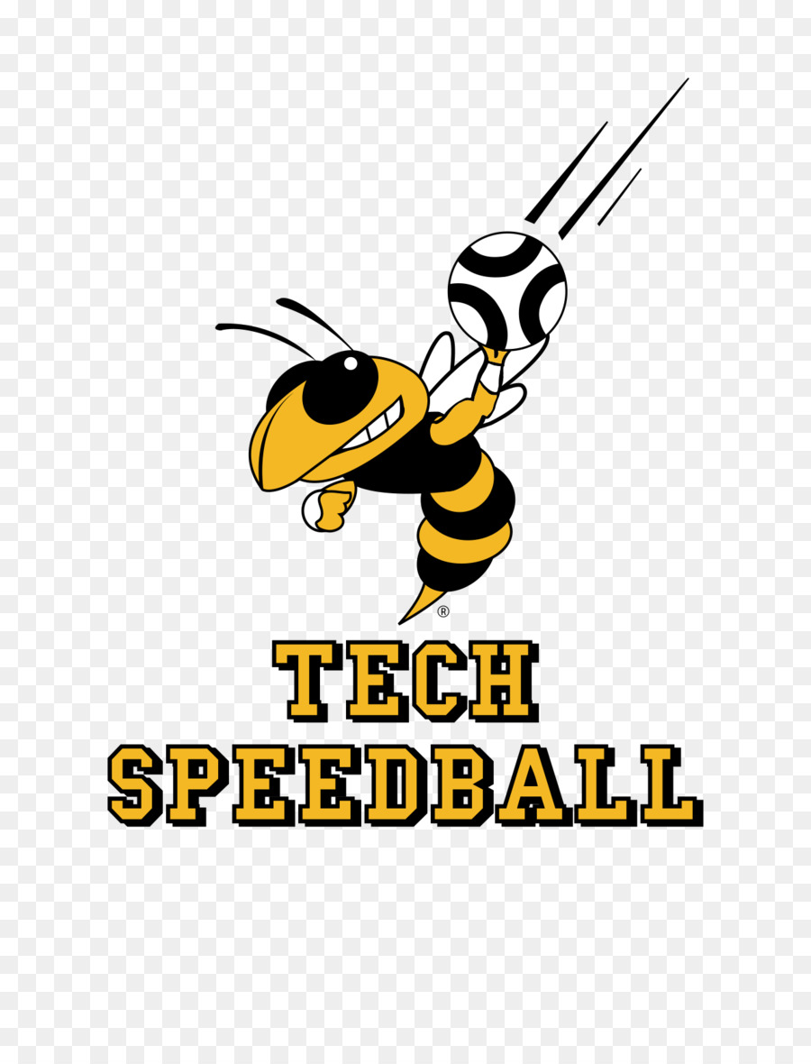 Cartoon Bee Png Download 1275 1650 Free Transparent Honey Bee
