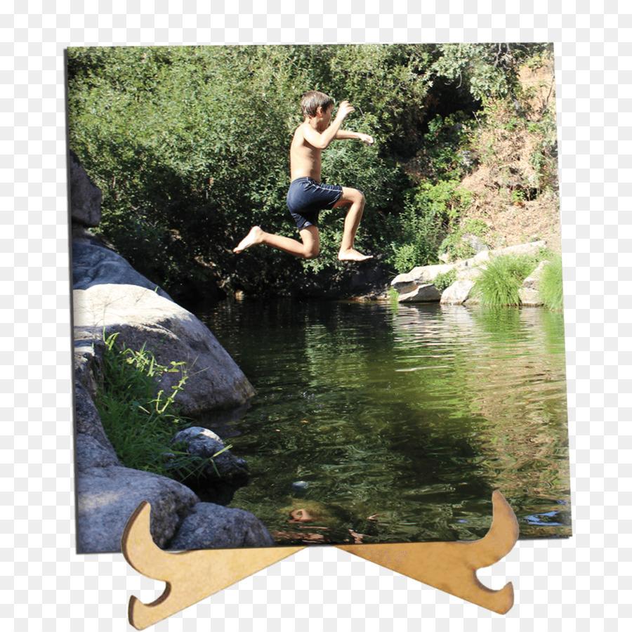 Pond Cartoon Png Download 11341134 Free Transparent