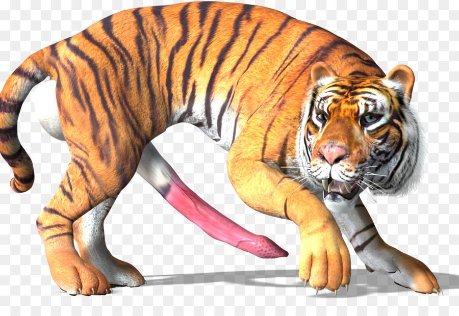 Cat Cartoon Png Download 1026 695 Free Transparent Tiger Png