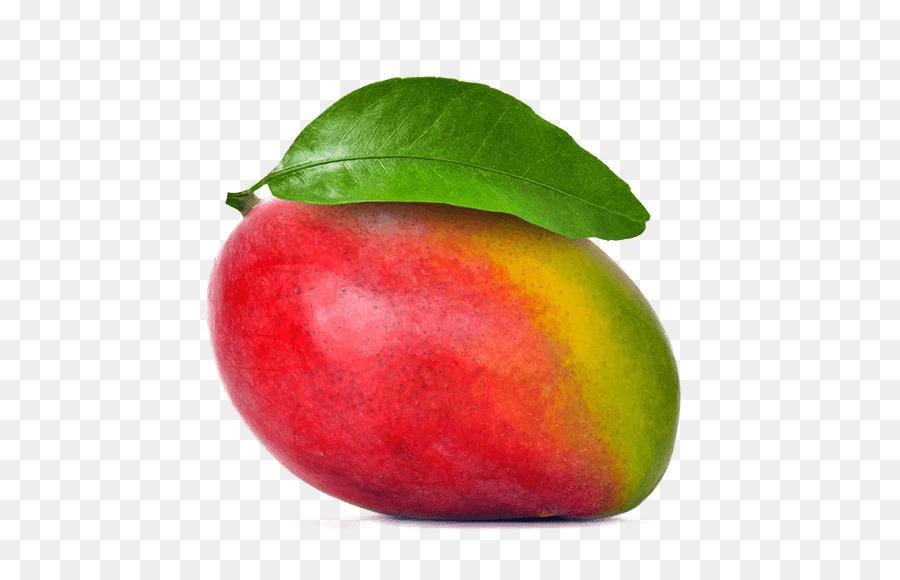 Apple Drawing Png Download 789 562 Free Transparent Mango Png