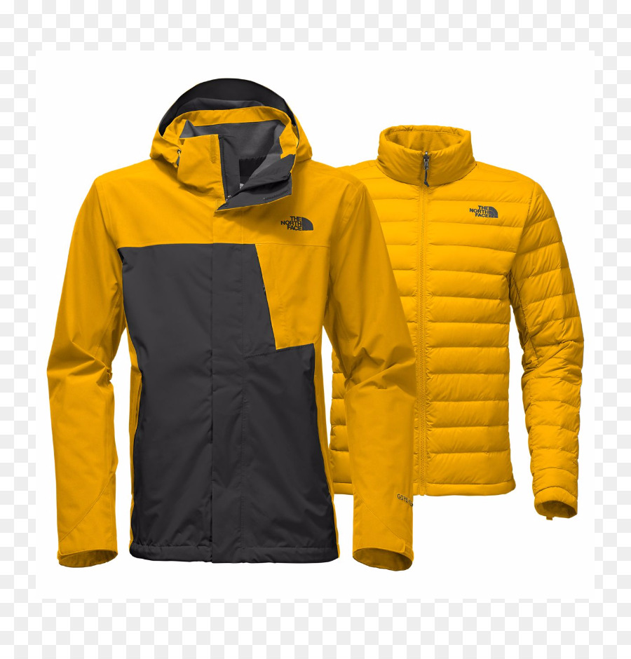 The North Face Jacke Kleidung Mantel Gore Tex Jacke png