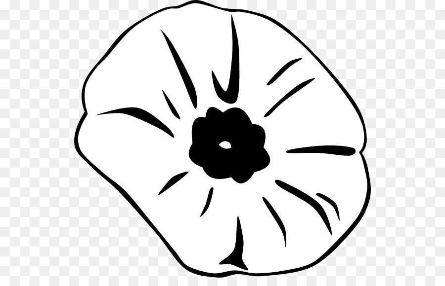 Black And White Flower Png Download 600 563 Free Transparent