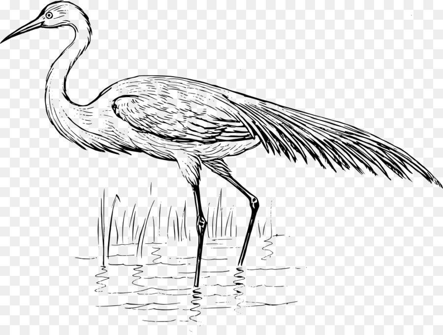 Bird Line Drawing Png Download 1000749 Free Transparent