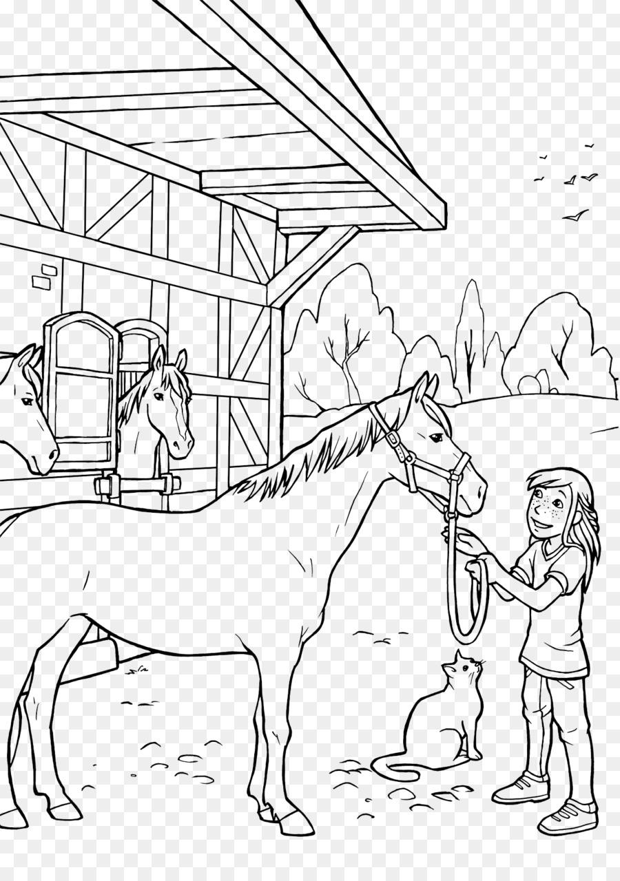 ausmalbilder pferde fohlen  kinder zeichnen und ausmalen