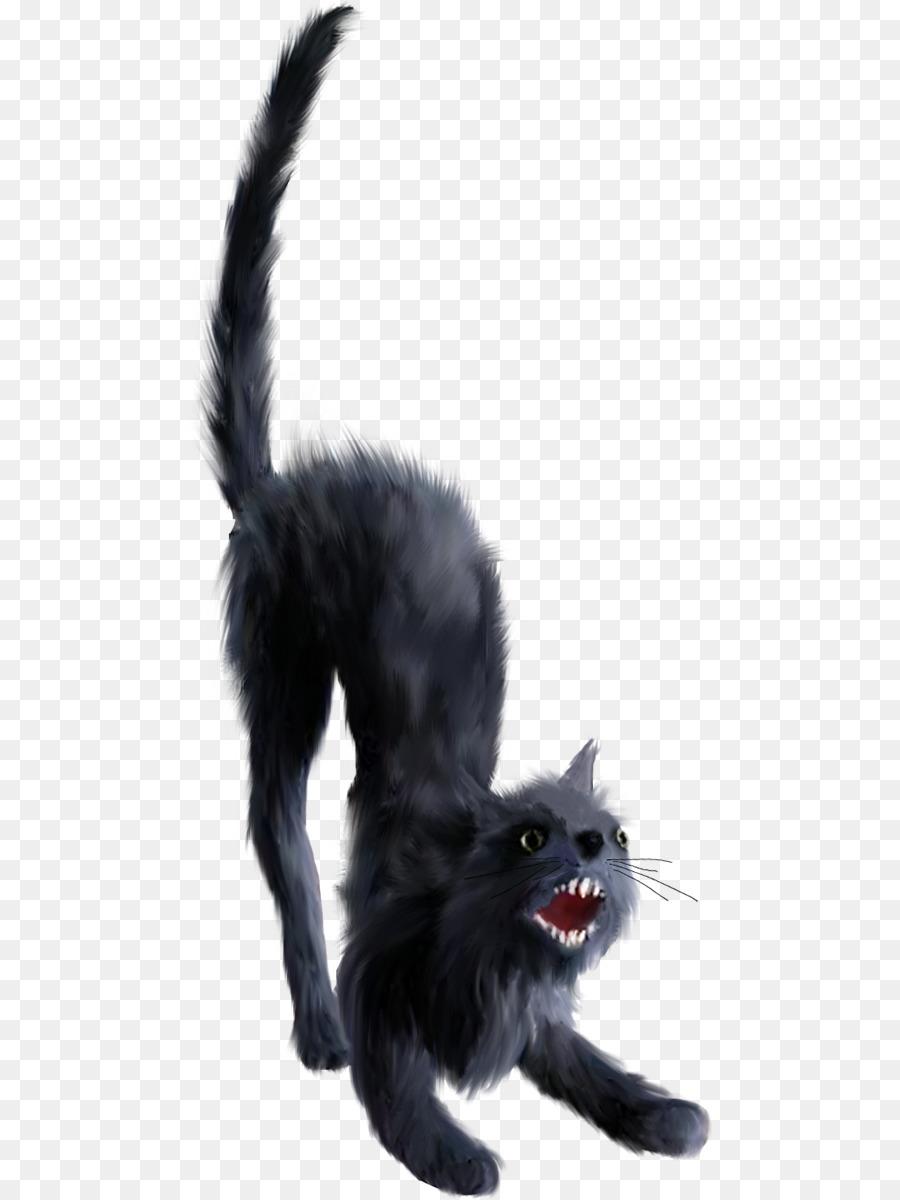 Cartoon Cat Png Download 529 1200 Free Transparent Black Cat