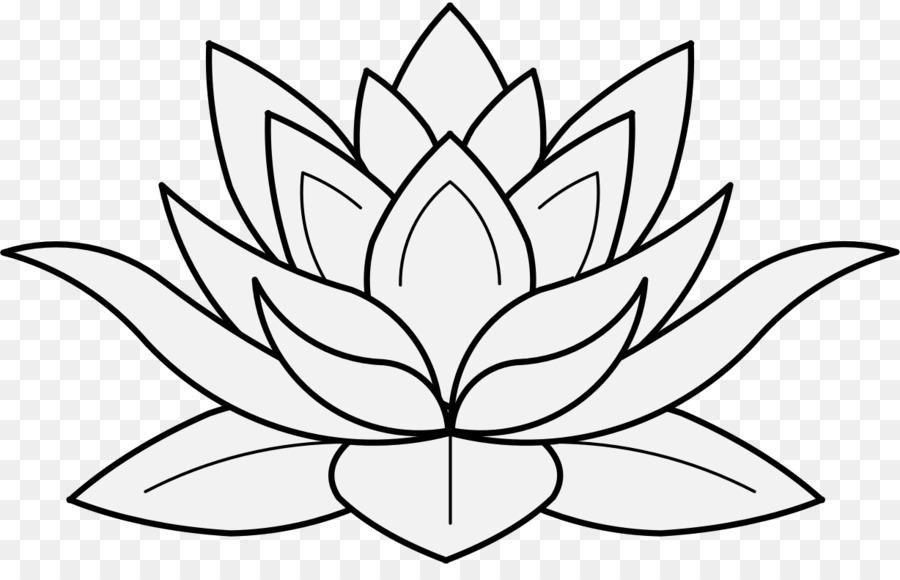 Nelumbo Nucifera Zeichnung Blumen Clipart Blume Png