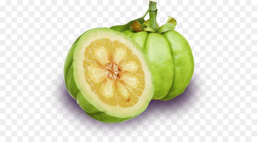Garcinia Cambogia Extrakt Gewichtsverlust Pillen