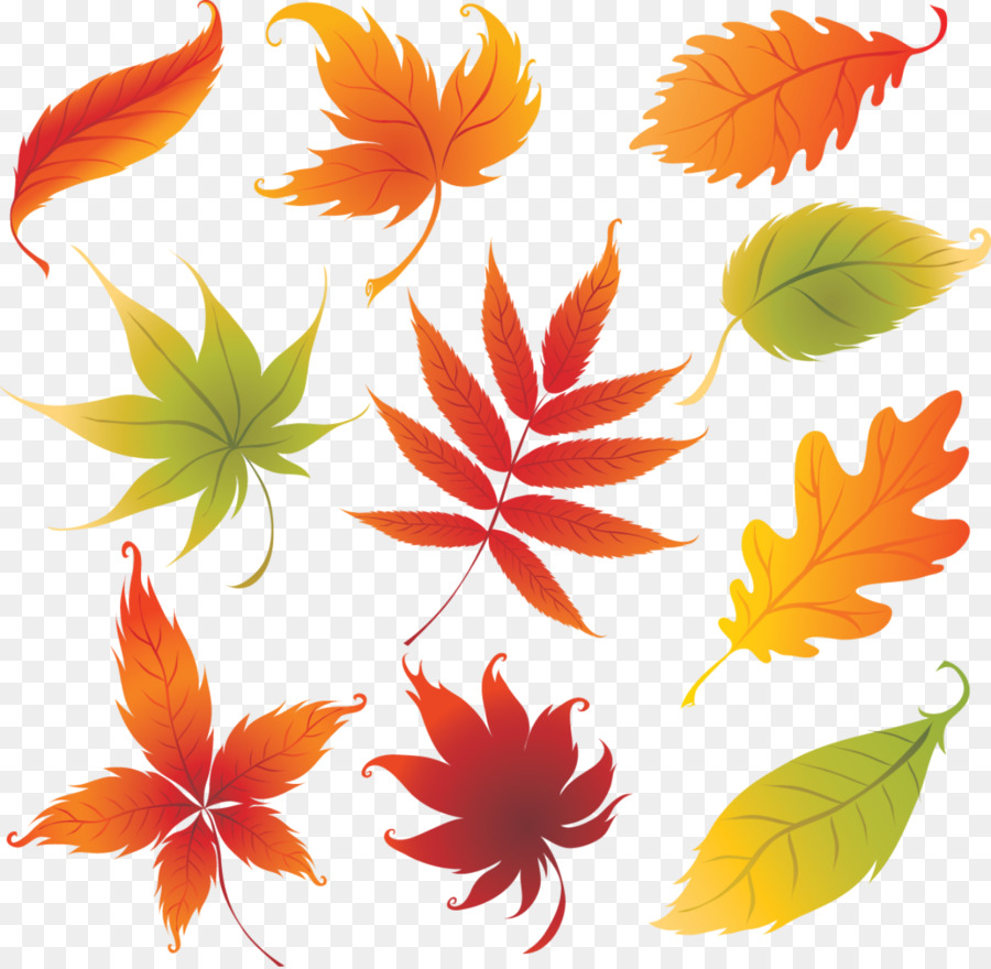 Autumn Leaves Drawing Png Download 1280 1248 Free Transparent Autumnal Leaves Png Download Cleanpng Kisspng