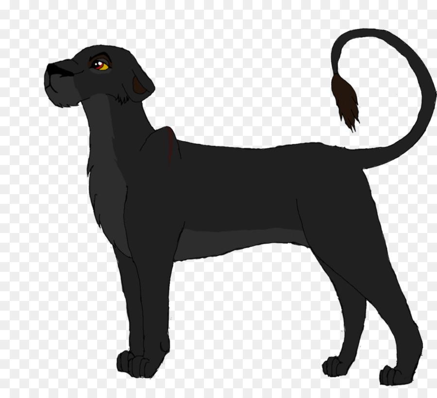 erwachsene labrador retriever