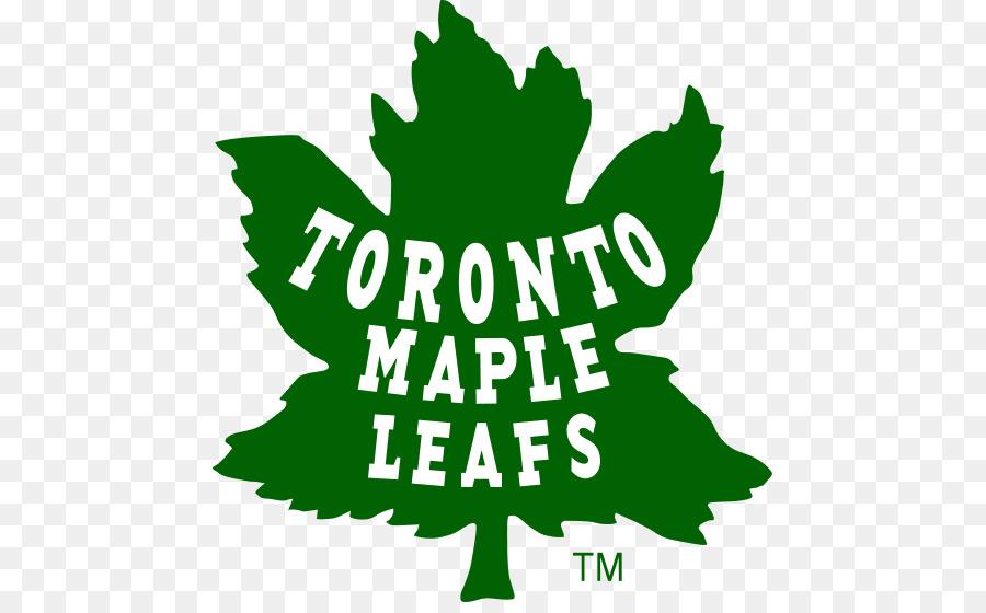 Green Leaf Logo Png Download 512 550 Free Transparent Toronto Maple Leafs Png Download Cleanpng Kisspng