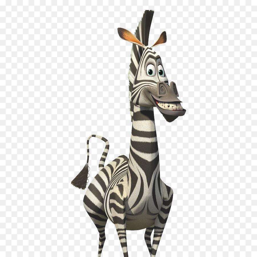 выбираю картинки зебра из мадагаскара на белом фоне адриано это получалось