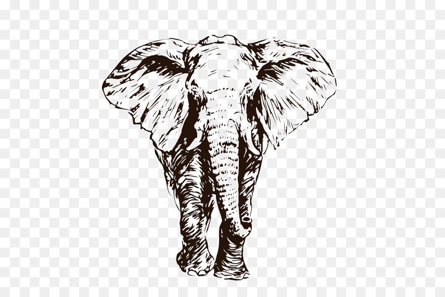 afrikanischer elefant indischer elefantskizzezeichnung