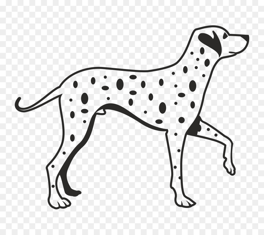 Dalmatian Dog Png