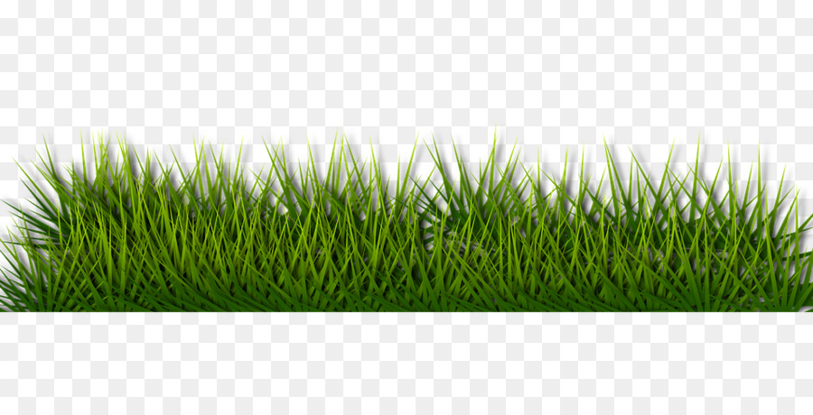 grass background png download 960 480 free transparent unitarian universalist church png download cleanpng kisspng free transparent unitarian universalist