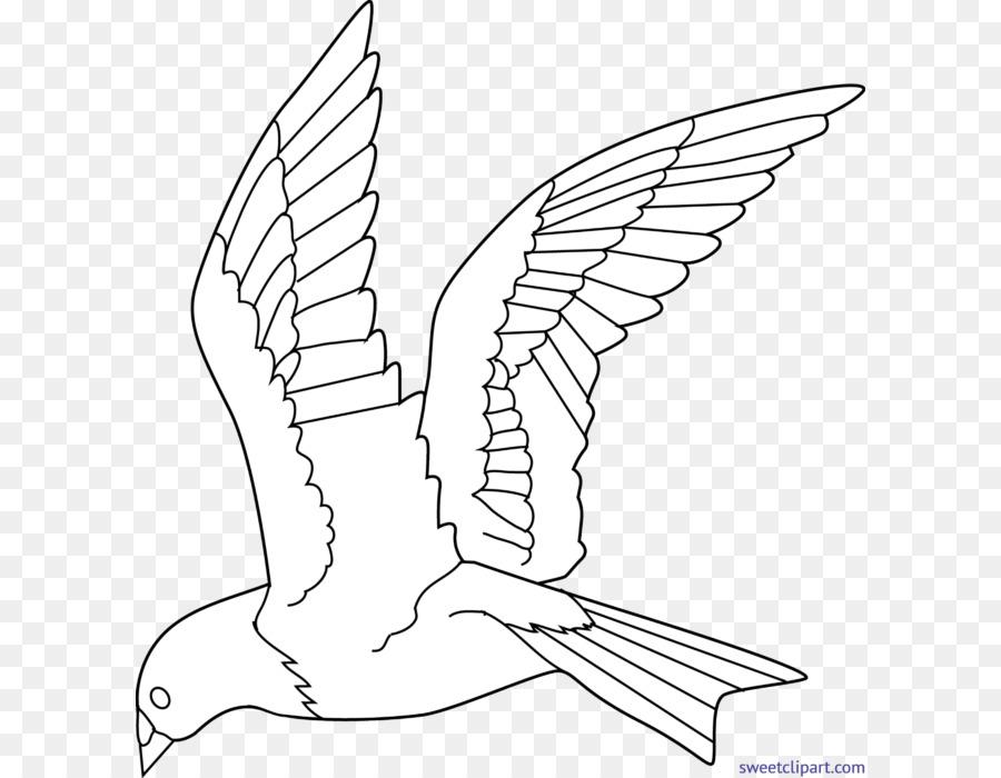 malvorlage vogel kostenlos