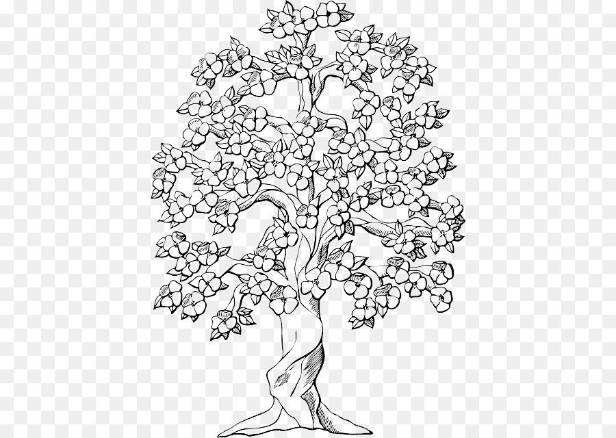 Malbuch-Malvorlagen Baum Eiche Stamm - Essen Trauben Skizze Png