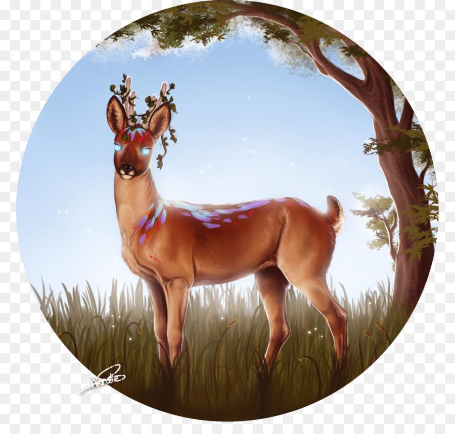 Rentier Pferd Säugetier Horn Guten Morgen Sonnenschein