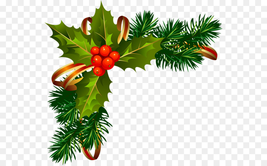 Christmas Graphics Free.Christmas Poinsettia Clipart Png Download 600 557 Free