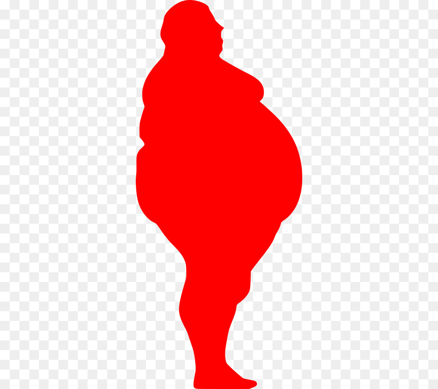 dieta per lobesità di tipo 2