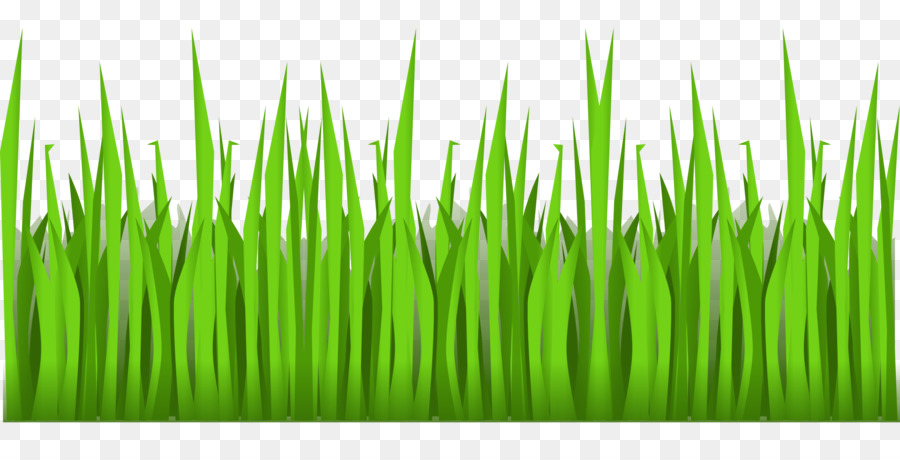 Green Grass Background Png Download 1920 960 Free Transparent