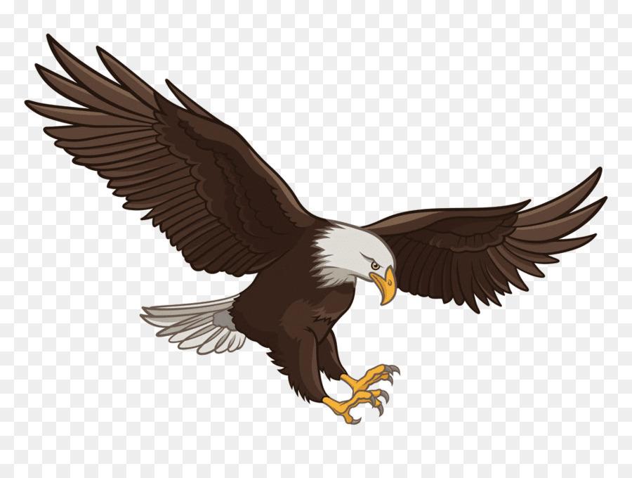 eagle cartoon png download - 1000*750 - free transparent bald eagle png  download. - cleanpng / kisspng  cleanpng