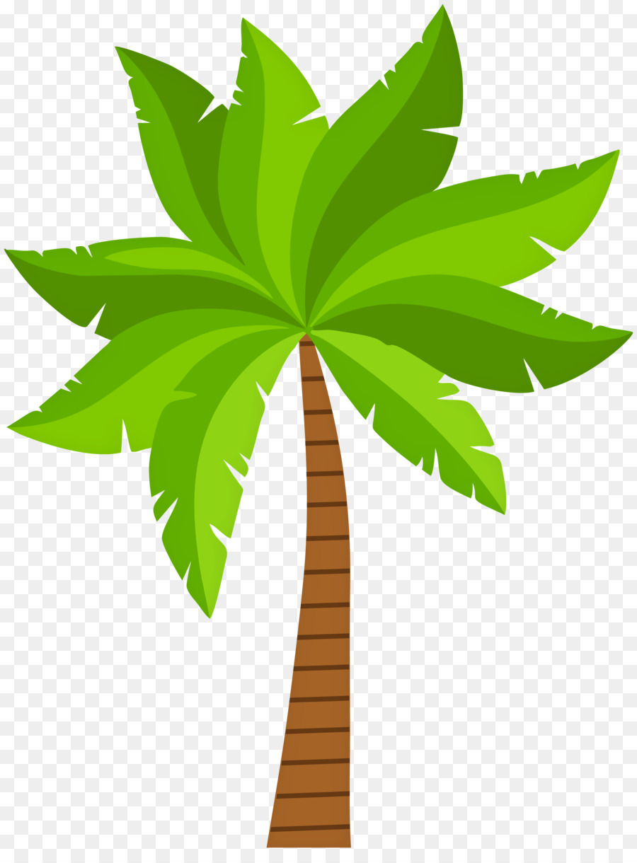 Palm Tree Background png download - 5978*8000 - Free Transparent ...