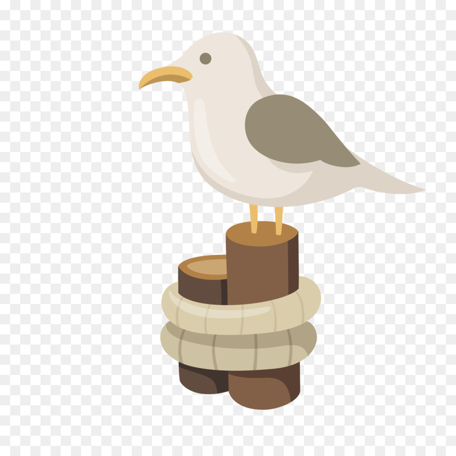 Bird Wing Png 2107 2107 Free Transparent Gulls