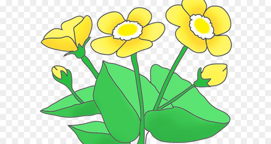 Flower Art Watercolor Png Download 640 480 Free Transparent