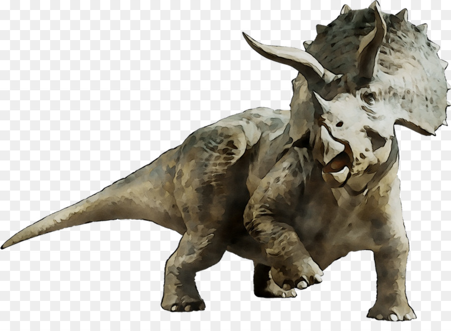 Jurassic Park Png Download 1438 1026 Free Transparent Triceratops Png Download Cleanpng Kisspng Polish your personal project or design with these jurassic world transparent png images, make it even more personalized and more attractive. jurassic park png download 1438 1026