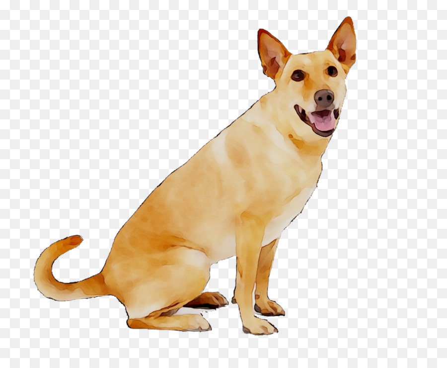 Dogs Cartoon Png Download 1316 1053 Free Transparent Carolina Dog Png Download Cleanpng Kisspng