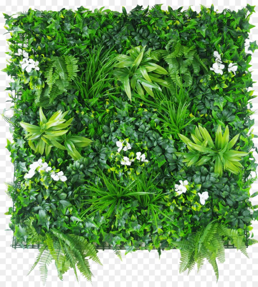 Grune Wand Designer Vertical Gardens Hedge Sommerabende Png