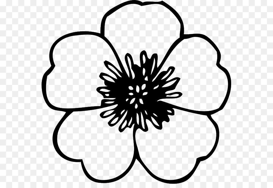 Blüte Clipart Schwarz Weiß