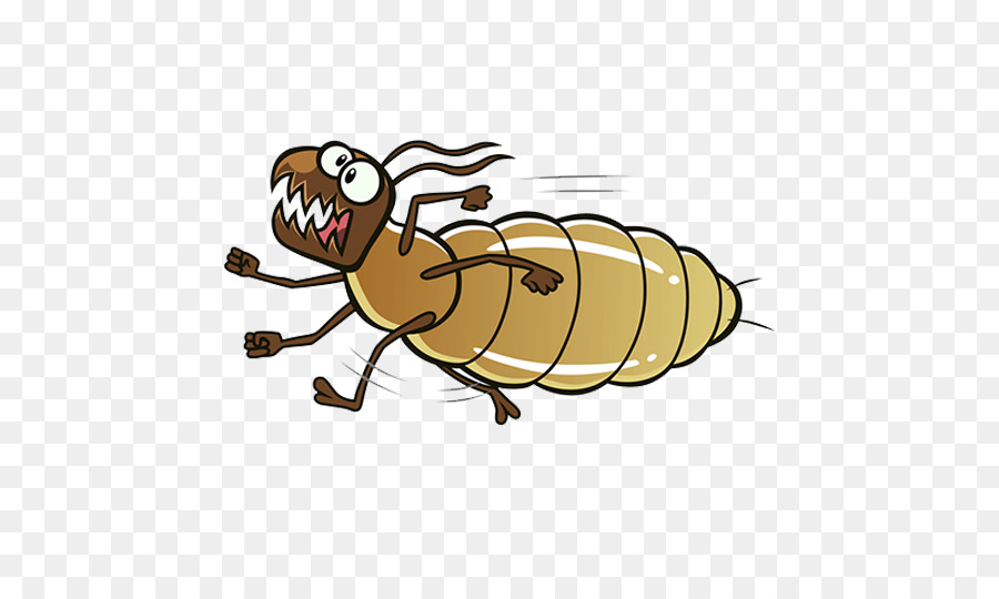 Ant Cartoon Png Download 500 539 Free Transparent Termite Png Download Cleanpng Kisspng
