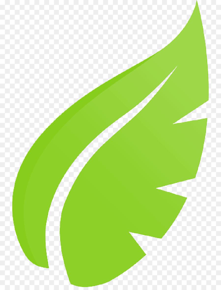 Green Leaf Logo Png Download 800 1168 Free Transparent Leaf Png Download Cleanpng Kisspng