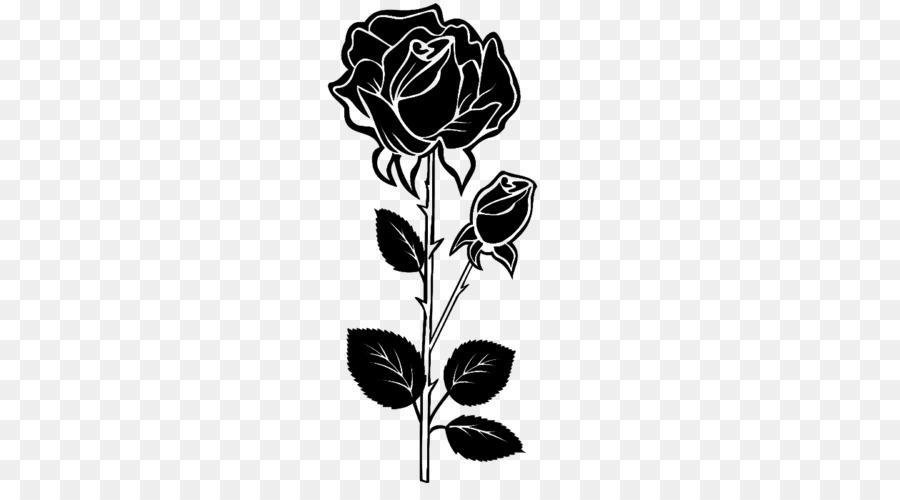Black Rose Drawing Png Download 500 500 Free Transparent Rose