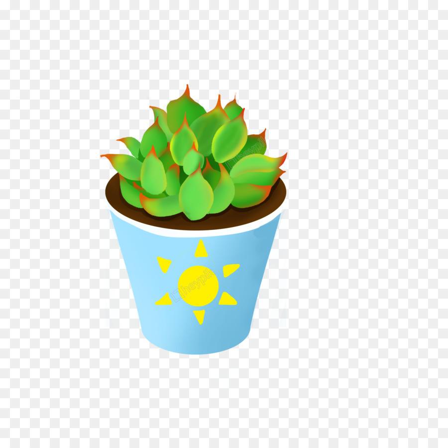 Cactus Cartoon Png Download 2000 2000 Free Transparent Succulent Plant Png Download Cleanpng Kisspng