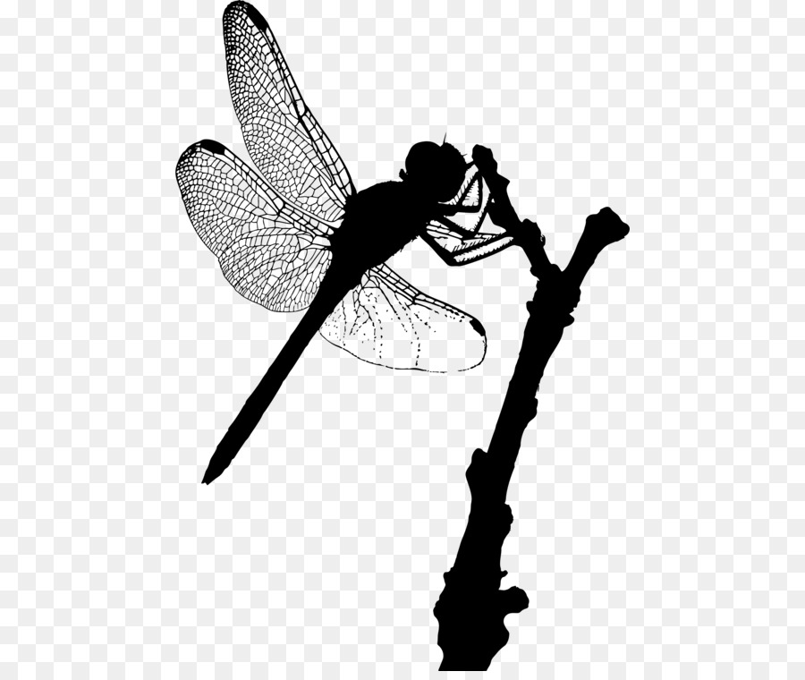 Insect A Dragonfly Silhouette Damselflies Png Download 508 750 Free Transparent Insect Png Download Cleanpng Kisspng New dragonfly designs everyday with commercial licenses. dragonfly silhouette damselflies png