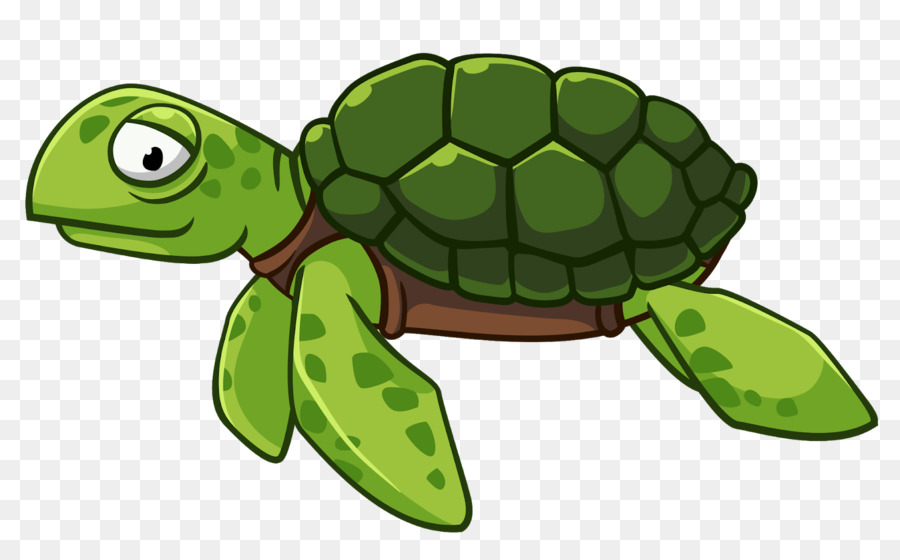 Sea Turtle Background Png Download 1600 990 Free Transparent