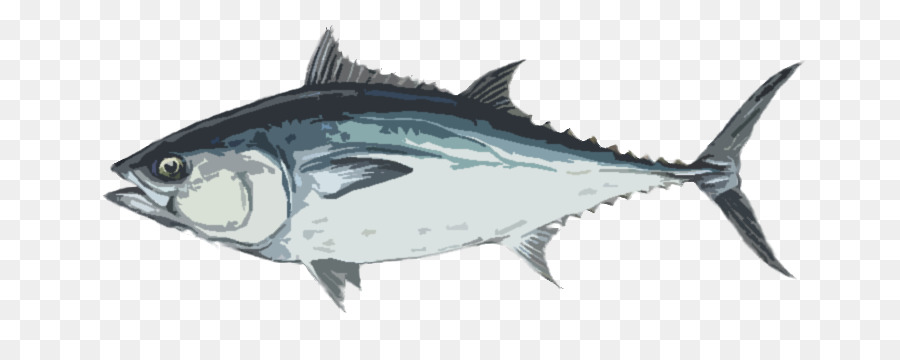 mouth cartoon png download 750 343 free transparent longtail tuna png download cleanpng kisspng free transparent longtail tuna png