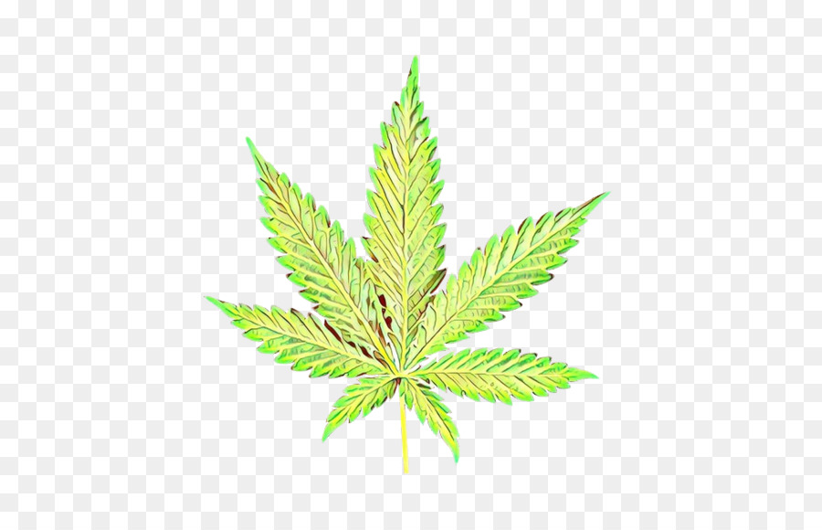 Weed Png Download 979 628 Free Transparent Cartoon Png Download Cleanpng Kisspng